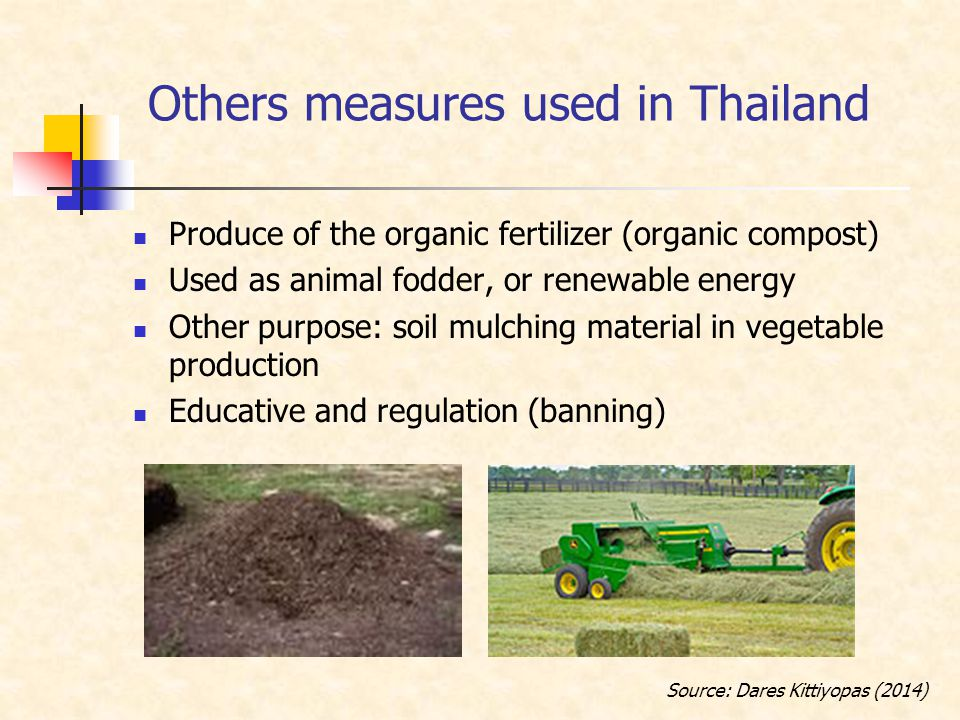 Others measures used in Thailand Produce of the organic fertilizer (organic compost) Used as animal fodder, or renewable energy Other purpose: soil mulching material in vegetable production Educative and regulation (banning) Source: Dares Kittiyopas (2014)