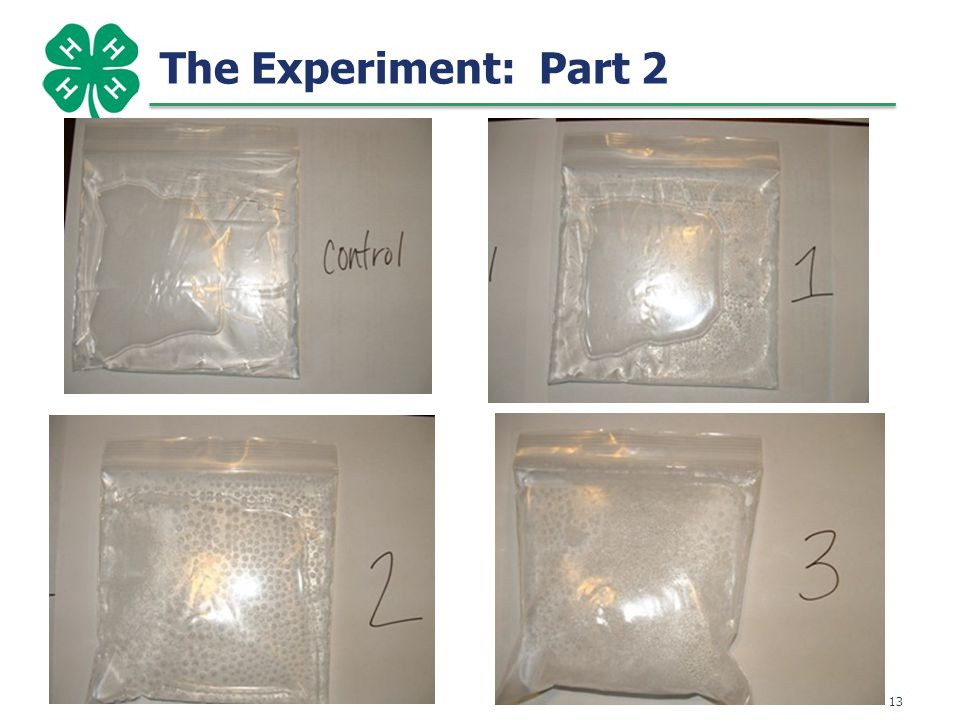 13 The Experiment: Part 2