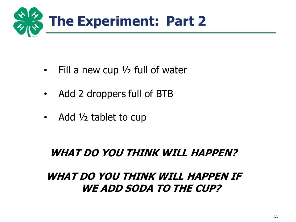 15 The Experiment: Part 2 Fill a new cup ½ full of water Add 2 droppers full of BTB Add ½ tablet to cup WHAT DO YOU THINK WILL HAPPEN.