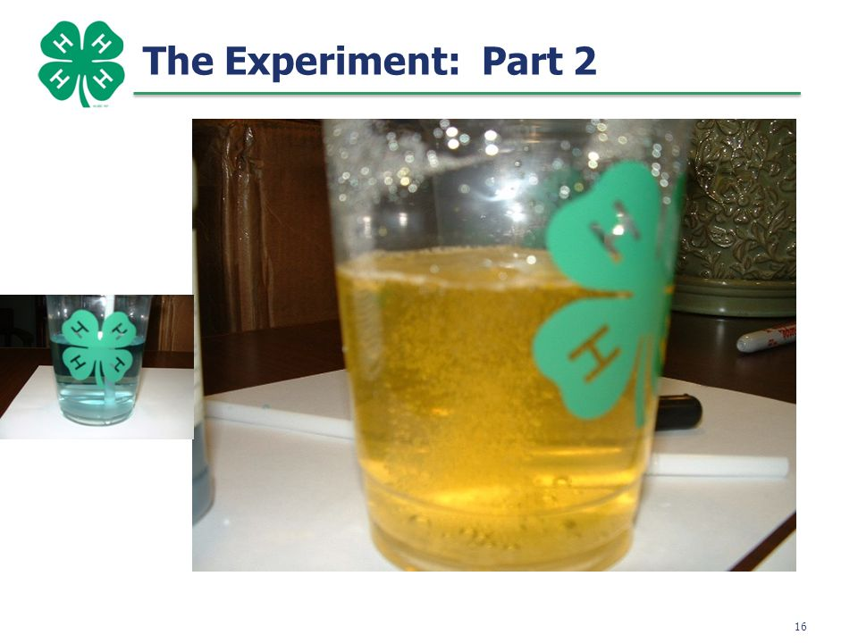 16 The Experiment: Part 2