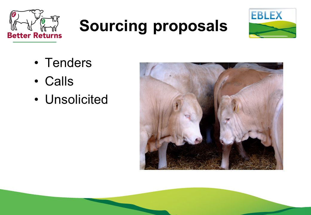 Sourcing proposals Tenders Calls Unsolicited