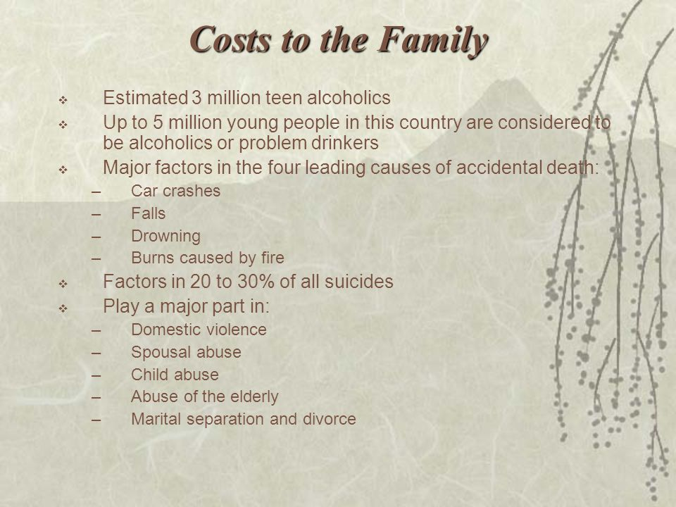 Costs to the Family  Estimated 3 million teen alcoholics  Up to 5 million young people in this country are considered to be alcoholics or problem dr