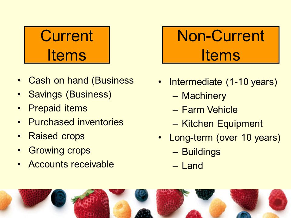Current Items Cash on hand (Business Savings (Business) Prepaid items Purchased inventories Raised crops Growing crops Accounts receivable Non-Current Items Intermediate (1-10 years) –Machinery –Farm Vehicle –Kitchen Equipment Long-term (over 10 years) –Buildings –Land