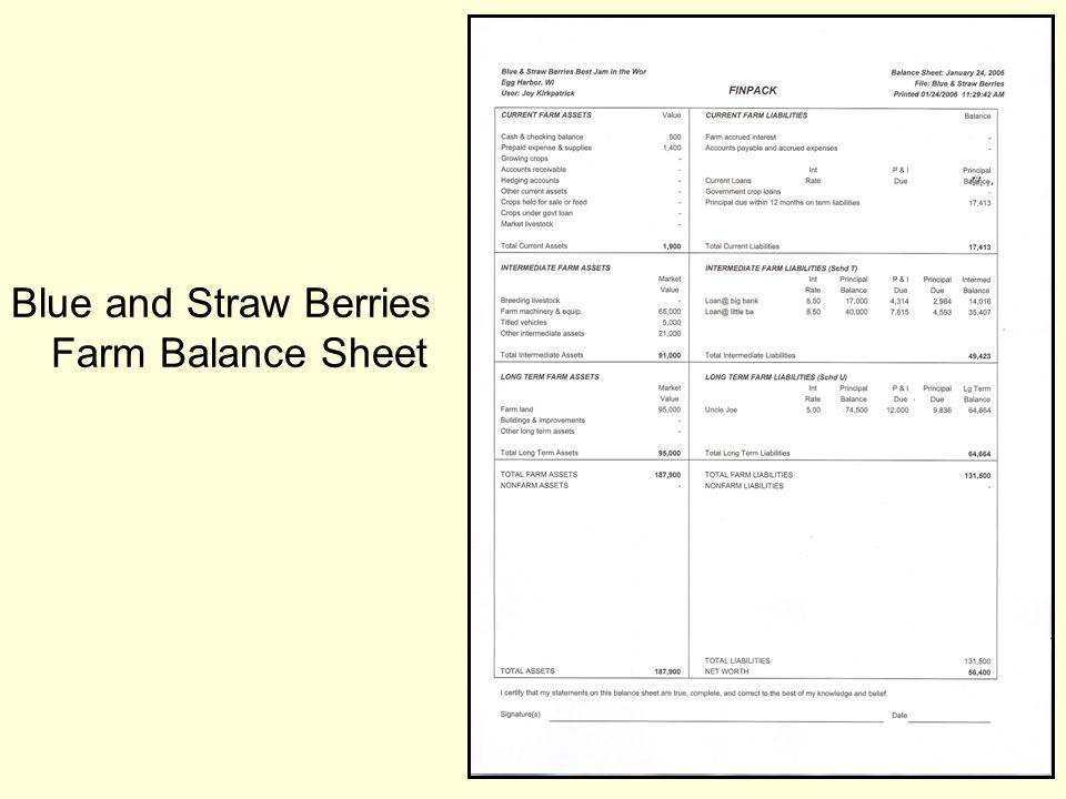 Blue and Straw Berries Farm Balance Sheet