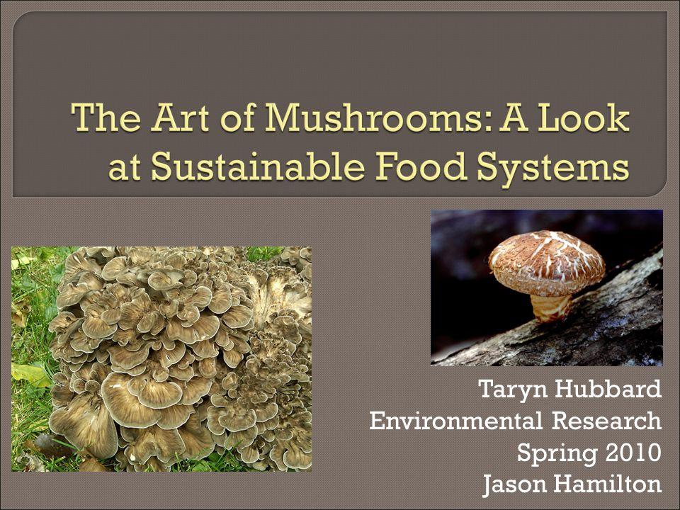 Taryn Hubbard Environmental Research Spring 2010 Jason Hamilton