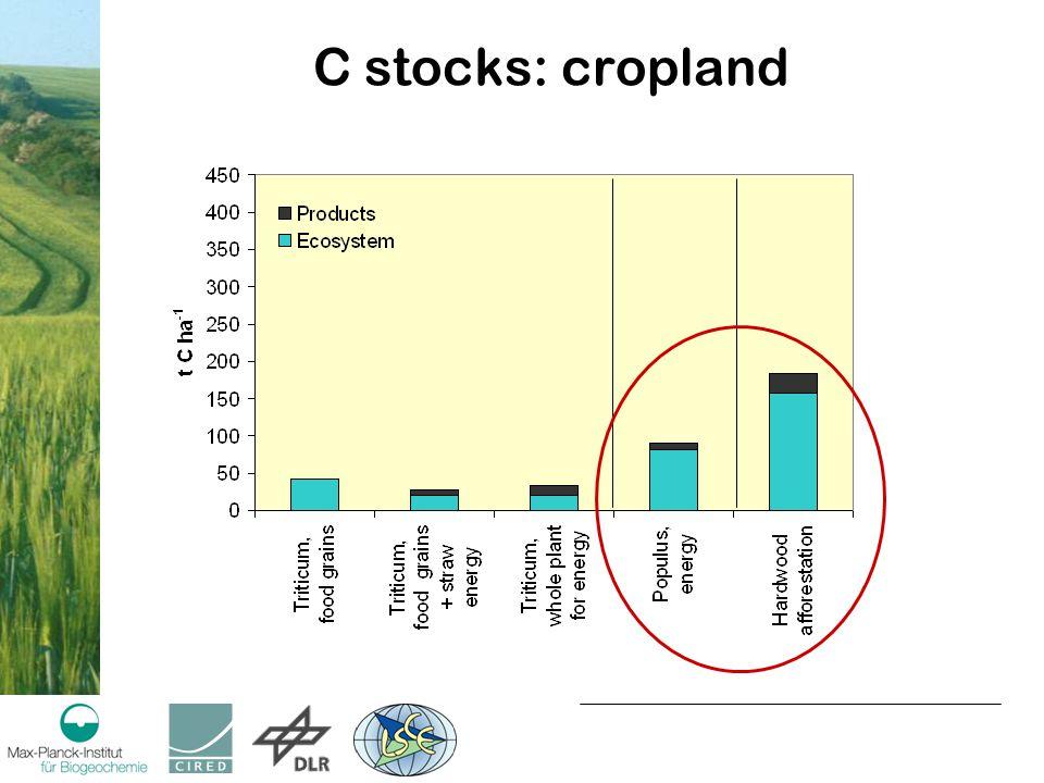 C stocks: cropland