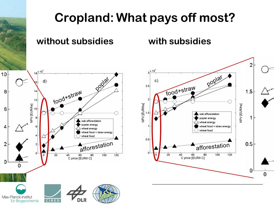 Cropland: What pays off most.