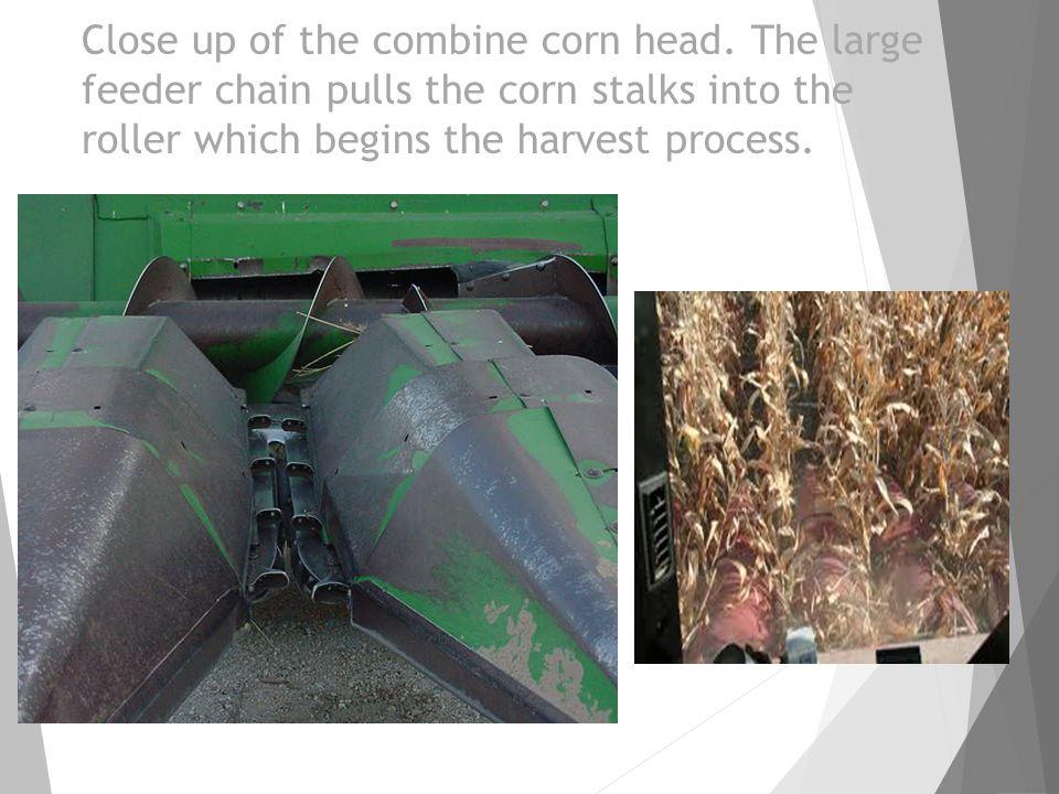 Close up of the combine corn head.