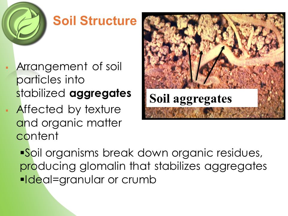  Arrangement of soil particles into stabilized aggregates  Affected by texture and organic matter content Soil Structure Soil aggregates  Soil orga