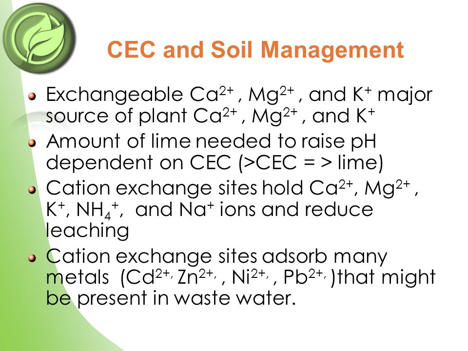 Exchangeable Ca 2+, Mg 2+, and K + major source of plant Ca 2+, Mg 2+, and K + Amount of lime needed to raise pH dependent on CEC (>CEC = > lime) Cati