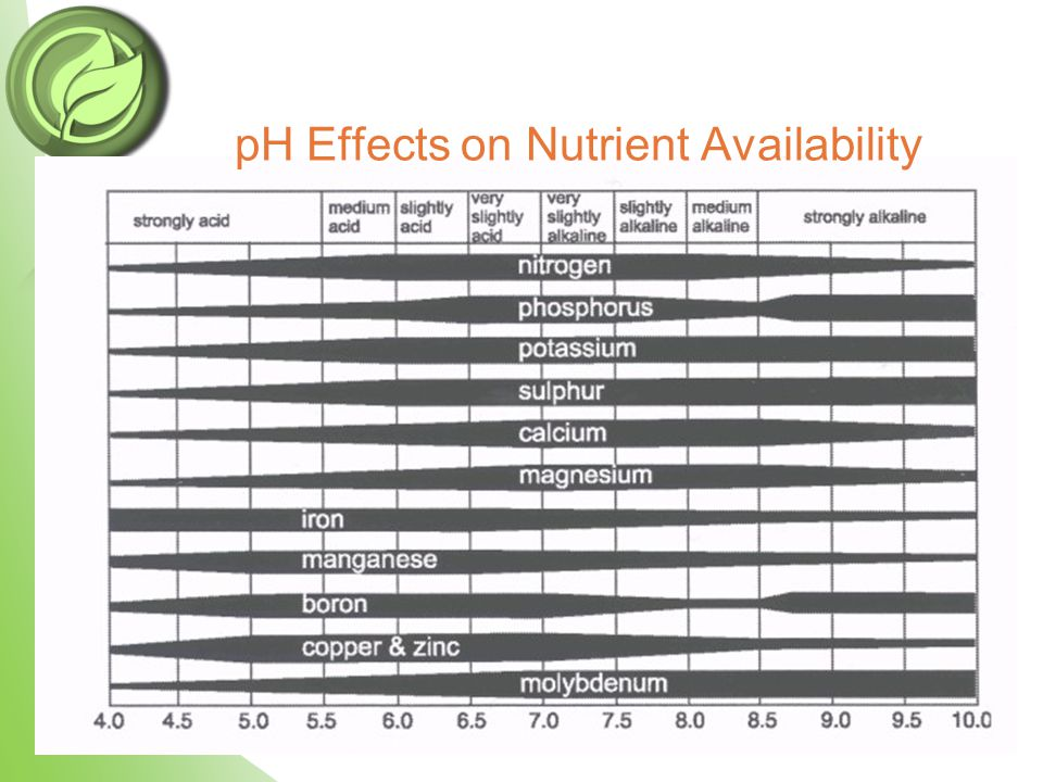 pH Effects on Nutrient Availability