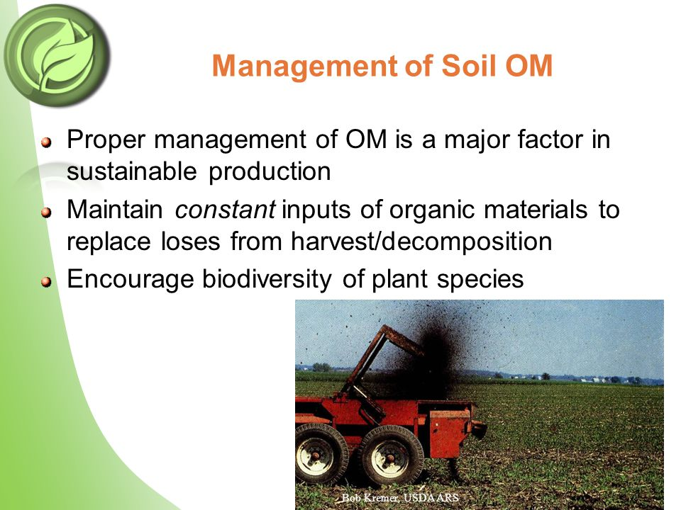 Proper management of OM is a major factor in sustainable production Maintain constant inputs of organic materials to replace loses from harvest/decomposition Encourage biodiversity of plant species Management of Soil OM Bob Kremer, USDA ARS