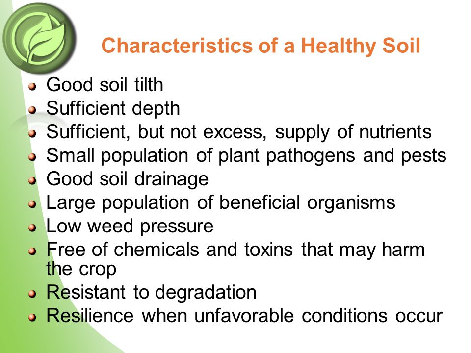 Good soil tilth Sufficient depth Sufficient, but not excess, supply of nutrients Small population of plant pathogens and pests Good soil drainage Larg
