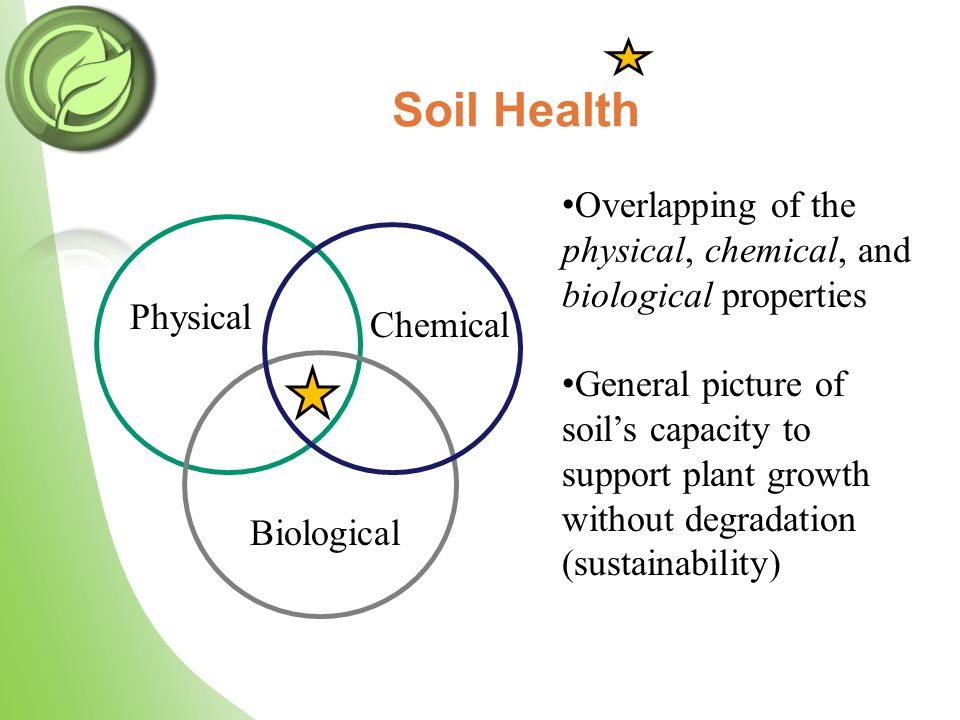 Soil Health Physical Chemical Biological Overlapping of the physical, chemical, and biological properties General picture of soil's capacity to suppor