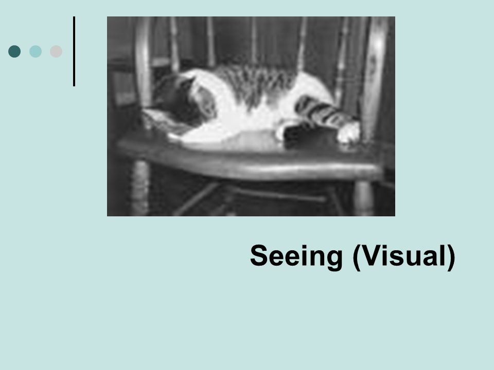 Seeing (Visual)