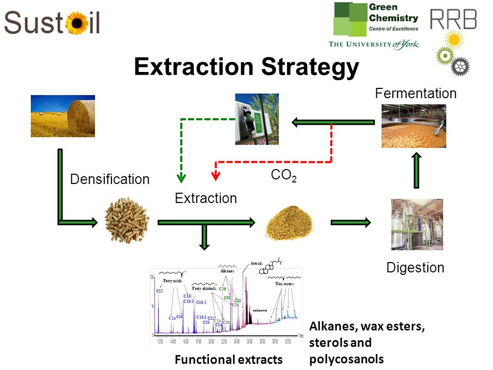 Extraction Strategy Densification Digestion Fermentation CO 2 Extraction Functional extracts Alkanes, wax esters, sterols and polycosanols