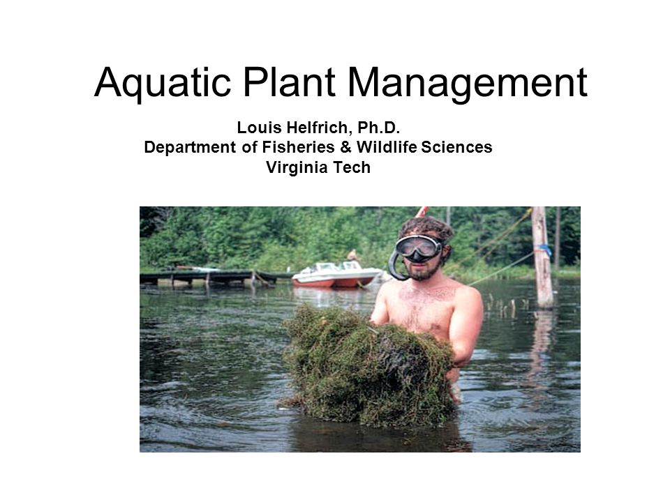 Aquatic Plant Management Louis Helfrich, Ph.D.