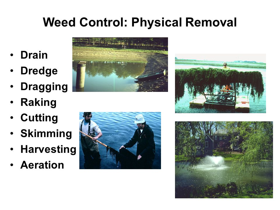 Weed Control: Physical Removal Drain Dredge Dragging Raking Cutting Skimming Harvesting Aeration