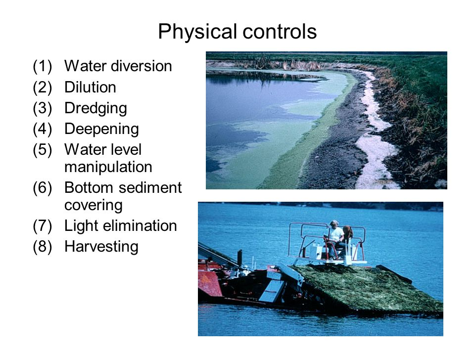 Physical controls (1)Water diversion (2)Dilution (3)Dredging (4)Deepening (5)Water level manipulation (6)Bottom sediment covering (7)Light elimination (8)Harvesting
