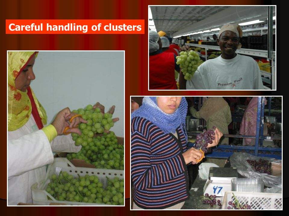 Careful handling of clusters