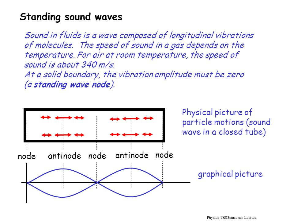Physics 1B03summer-Lecture 10 Standing sound waves Sound in fluids is a wave composed of longitudinal vibrations of molecules. The speed of sound in a