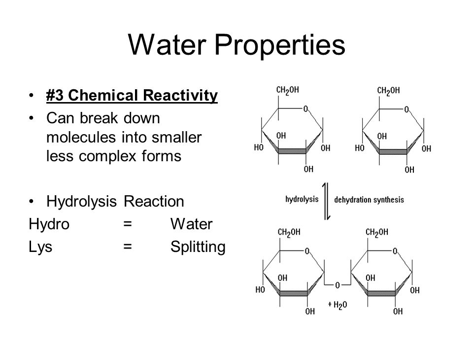 Water Properties #3 Chemical Reactivity Can break down molecules into smaller less complex forms Hydrolysis Reaction Hydro =Water Lys =Splitting