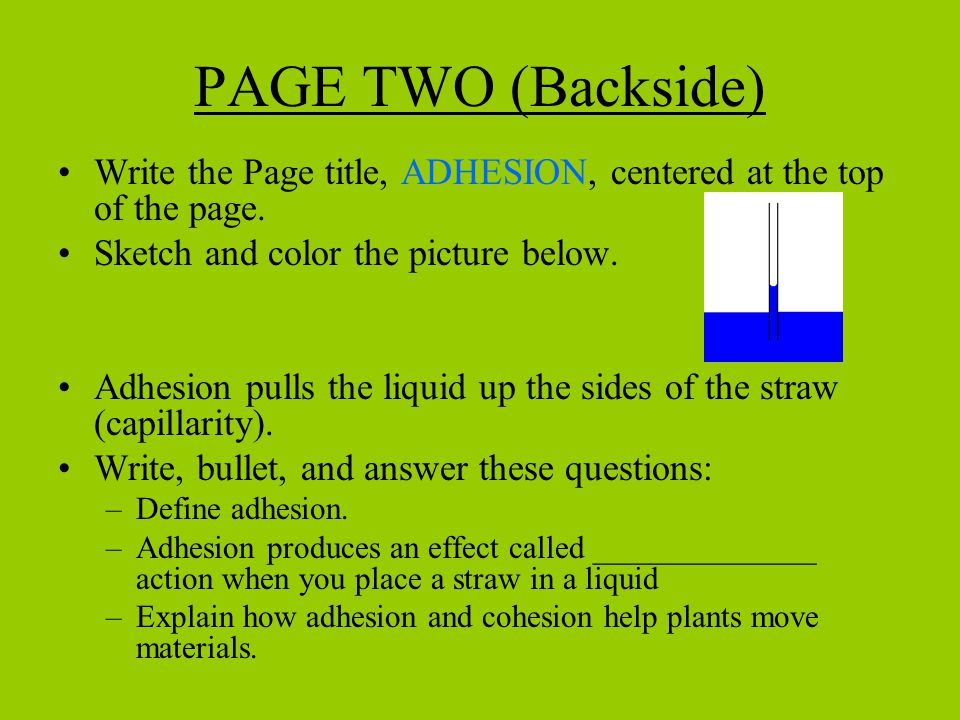 PAGE TWO (Backside) Write the Page title, ADHESION, centered at the top of the page.