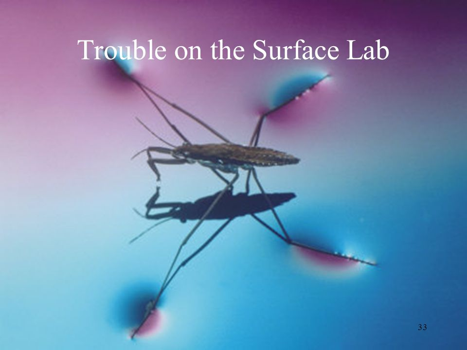 33 Trouble on the Surface Lab