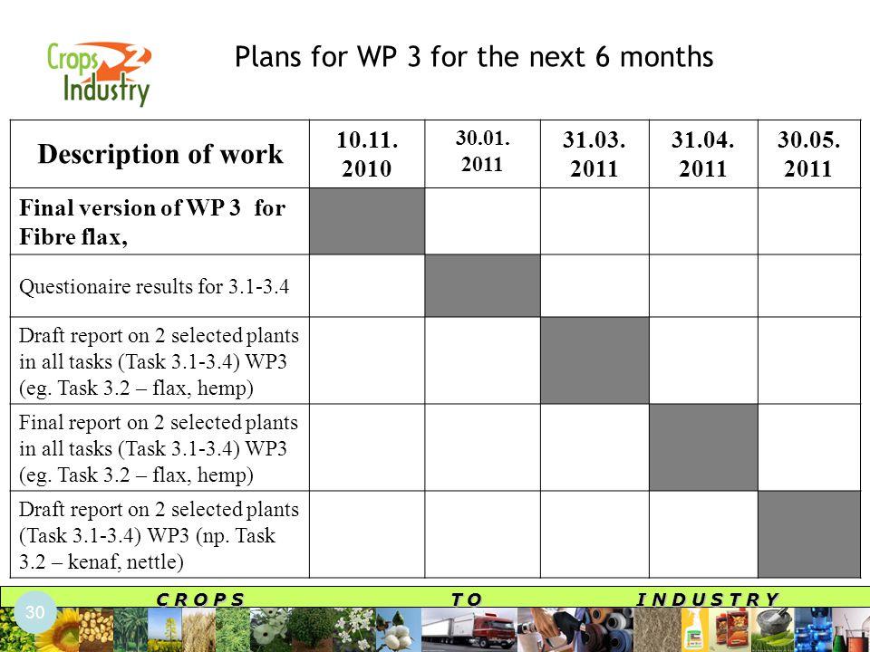 C R O P S T O I N D U S T R Y Plans for WP 3 for the next 6 months Description of work 10.11.
