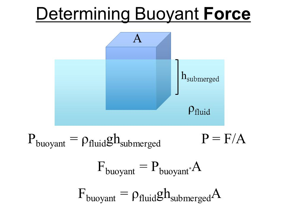 Determining Buoyant Force A h submerged ρ fluid P buoyant = ρ fluid gh submerged F buoyant = P buoyant * A P = F/A F buoyant = ρ fluid gh submerged A