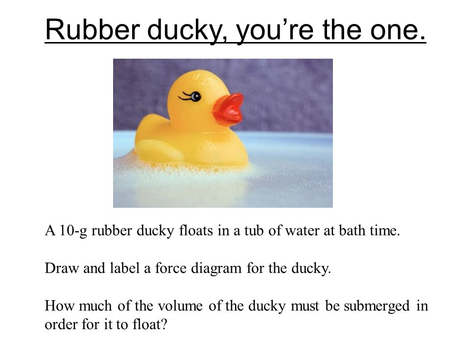 Rubber ducky, you're the one. A 10-g rubber ducky floats in a tub of water at bath time. Draw and label a force diagram for the ducky. How much of the