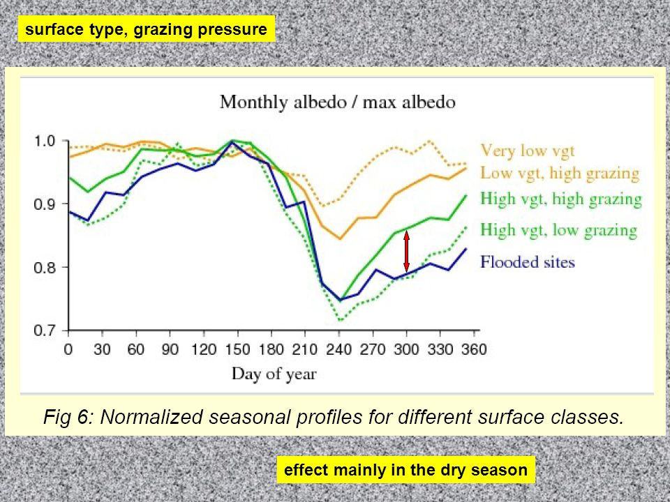 surface type, grazing pressure effect mainly in the dry season