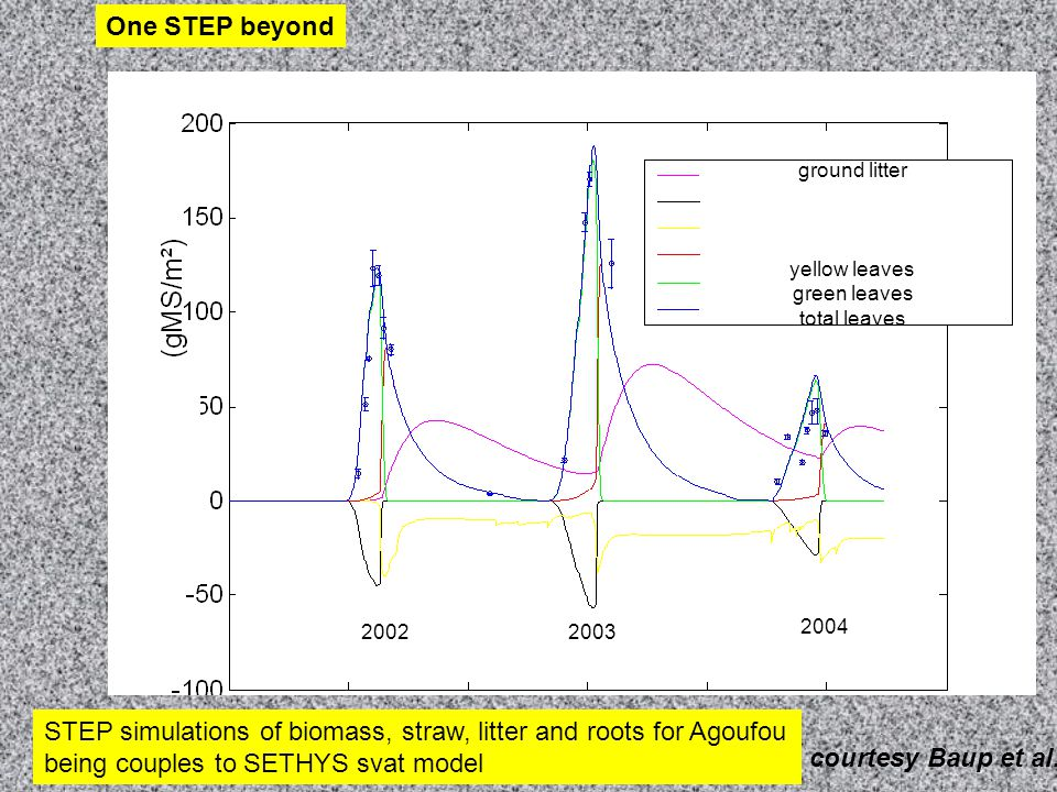 STEP simulations of biomass, straw, litter and roots for Agoufou being couples to SETHYS svat model 20022003 2004 ground litter yellow leaves green leaves total leaves One STEP beyond courtesy Baup et al.