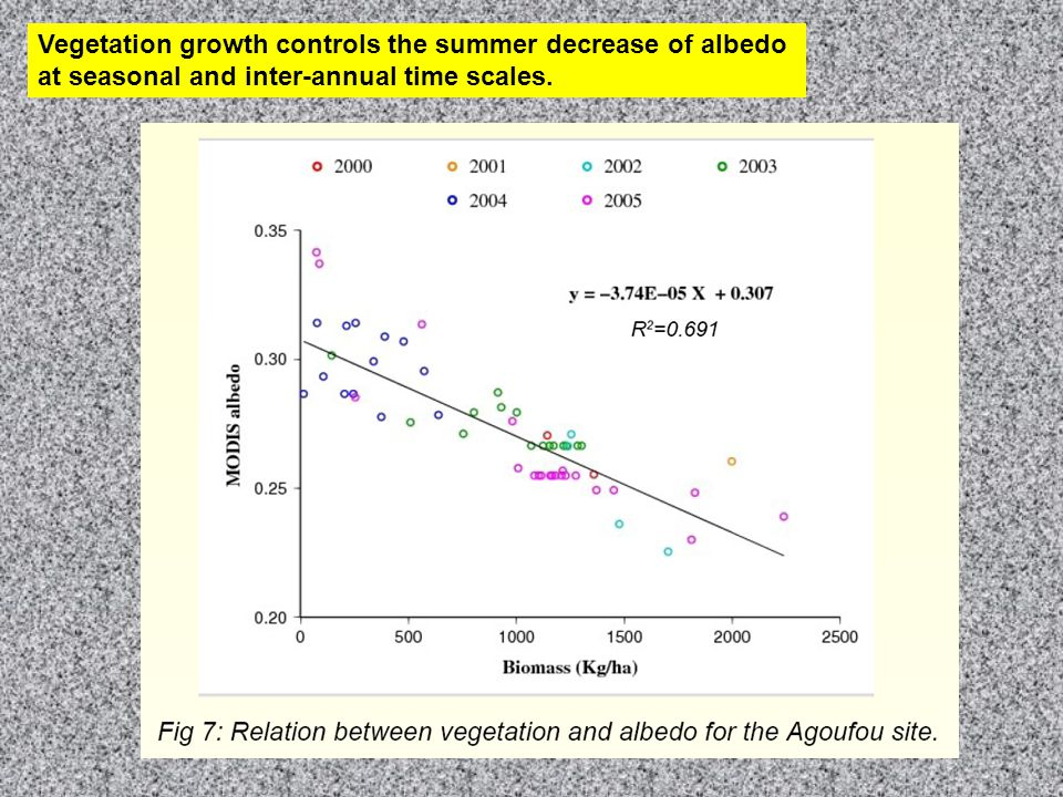 Both NIR and Vis spectral band decrease with biomass Straw + litter dynamics controls dry season albedo (bright soil) No 'vegetation' cycle in 2004....