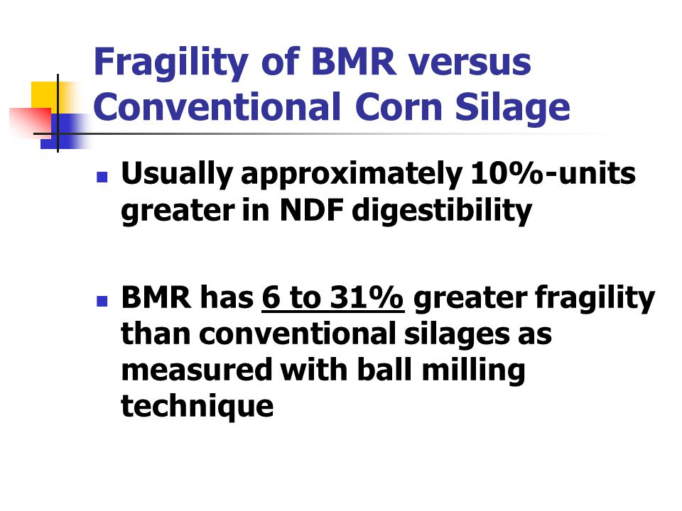 Fragility of BMR versus Conventional Corn Silage Usually approximately 10%-units greater in NDF digestibility BMR has 6 to 31% greater fragility than