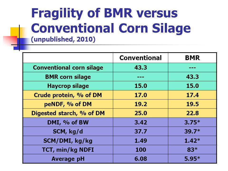 Fragility of BMR versus Conventional Corn Silage (unpublished, 2010) ConventionalBMR Conventional corn silage43.3--- BMR corn silage---43.3 Haycrop silage15.0 Crude protein, % of DM17.017.4 peNDF, % of DM19.219.5 Digested starch, % of DM25.022.8 DMI, % of BW3.423.75* SCM, kg/d37.739.7* SCM/DMI, kg/kg1.491.42* TCT, min/kg NDFI10083* Average pH6.085.95*