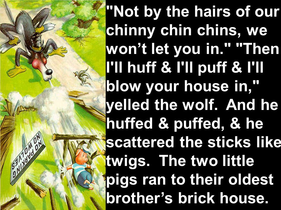 Not by the hairs of our chinny chin chins, we won't let you in. Then I ll huff & I ll puff & I ll blow your house in, yelled the wolf.
