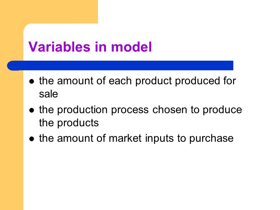 Variables in model the amount of each product produced for sale the production process chosen to produce the products the amount of market inputs to p