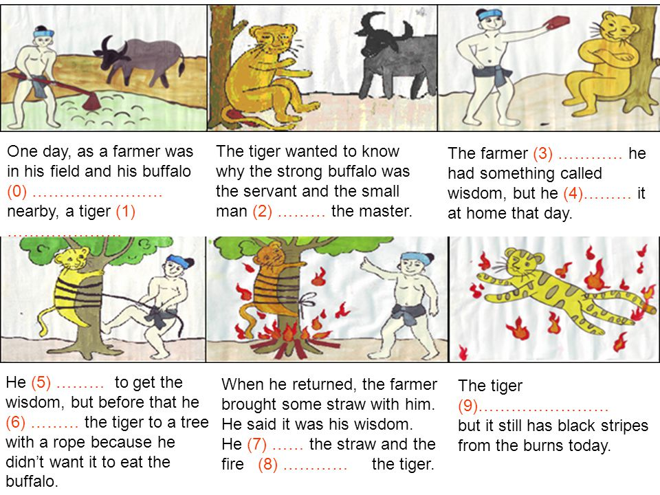 One day, as a farmer was in his field and his buffalo (0) …………………… nearby, a tiger (1) ………………… The tiger wanted to know why the strong buffalo was the servant and the small man (2) ……… the master.