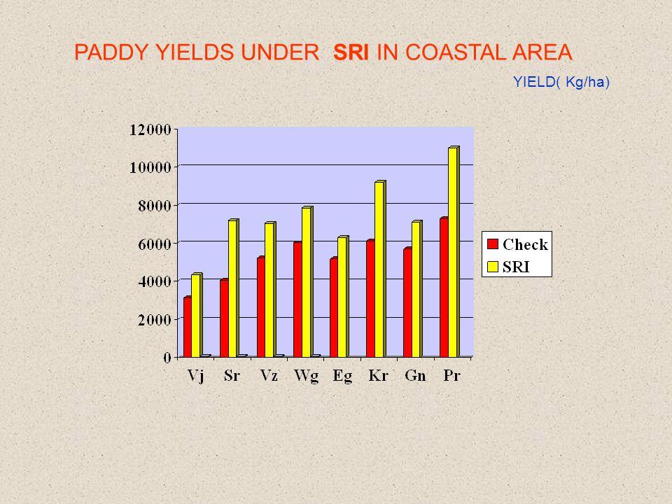PADDY YIELDS UNDER SRI IN COASTAL AREA YIELD( Kg/ha)