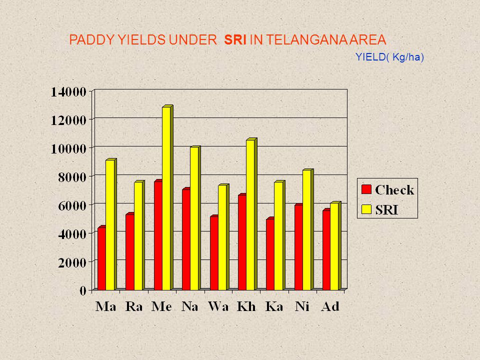 PADDY YIELDS UNDER SRI IN TELANGANA AREA YIELD( Kg/ha)