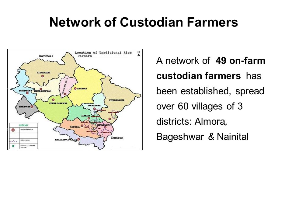 Network of Custodian Farmers A network of 49 on-farm custodian farmers has been established, spread over 60 villages of 3 districts: Almora, Bageshwar & Nainital