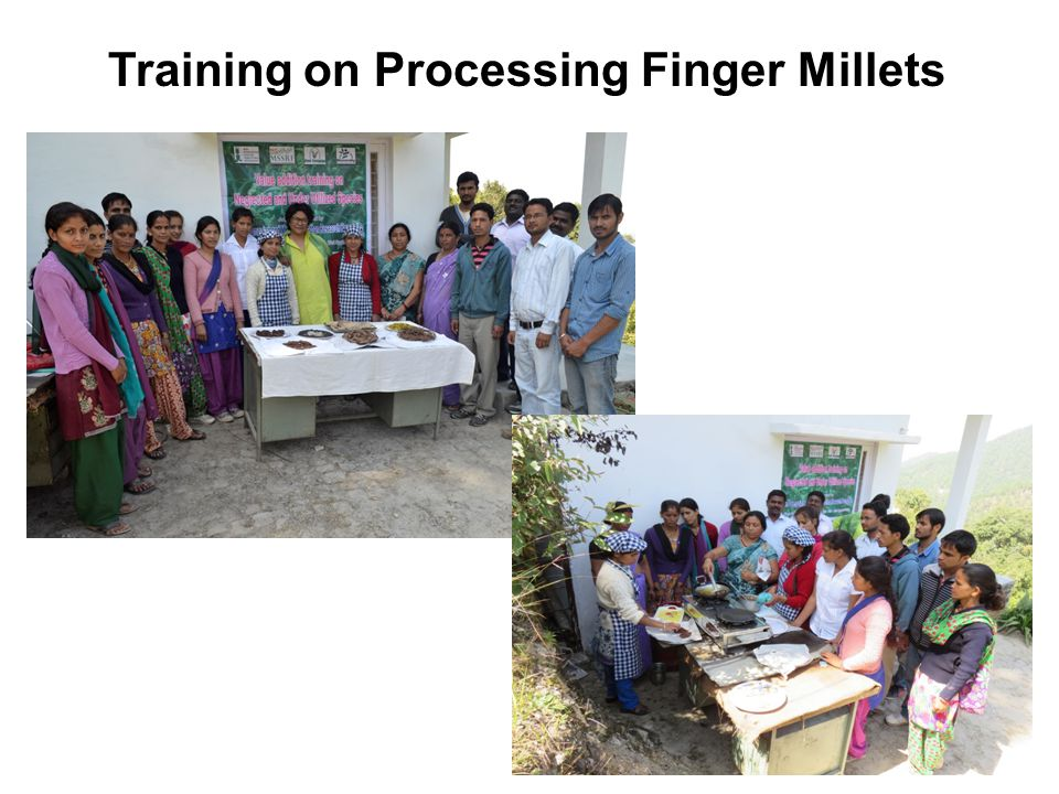 Training on Processing Finger Millets
