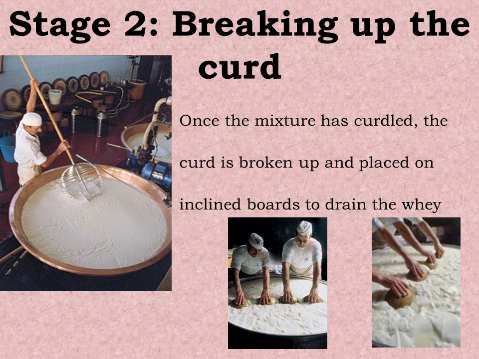 Stage 2: Breaking up the curd Once the mixture has curdled, the curd is broken up and placed on inclined boards to drain the whey