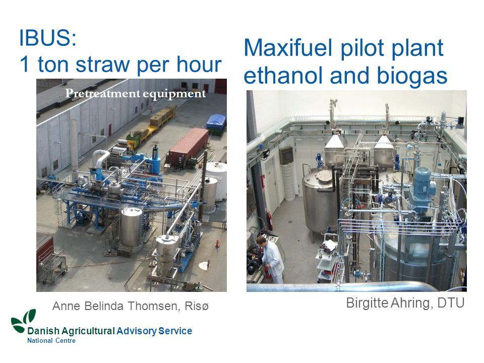 Danish Agricultural Advisory Service National Centre IBUS: 1 ton straw per hour Pretreatment equipment Anne Belinda Thomsen, Risø Maxifuel pilot plant ethanol and biogas Birgitte Ahring, DTU