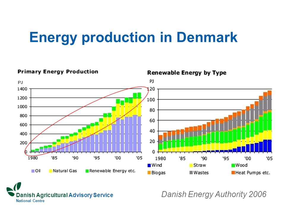Danish Agricultural Advisory Service National Centre Energy production in Denmark Danish Energy Authority 2006