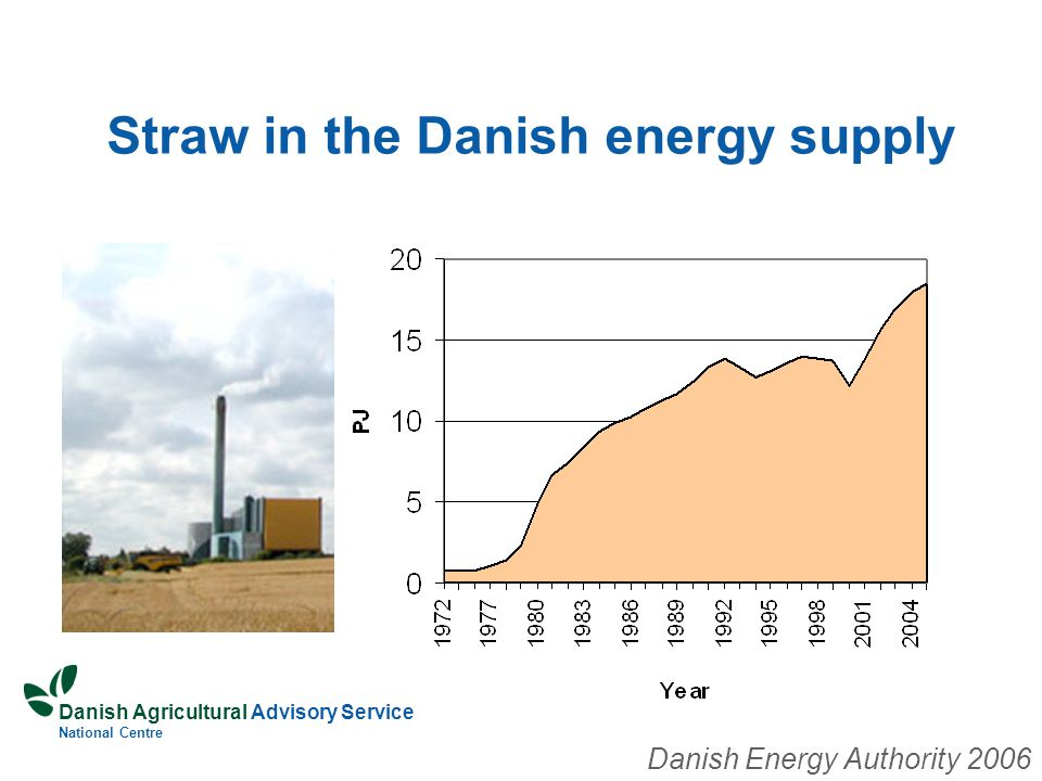 Danish Agricultural Advisory Service National Centre Straw in the Danish energy supply Danish Energy Authority 2006