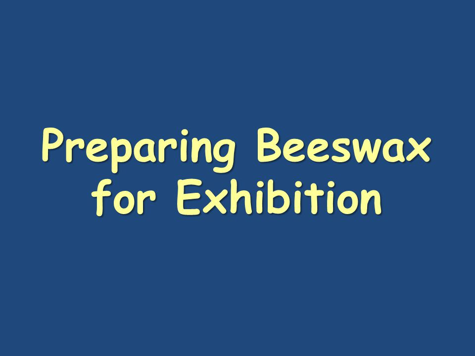 Preparing Beeswax for Exhibition