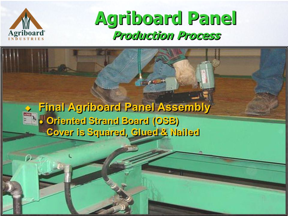 Agriboard Panel Production Process  Final Agriboard Panel Assembly Oriented Strand Board (OSB) Cover is Squared, Glued & Nailed  Final Agriboard Panel Assembly Oriented Strand Board (OSB) Cover is Squared, Glued & Nailed