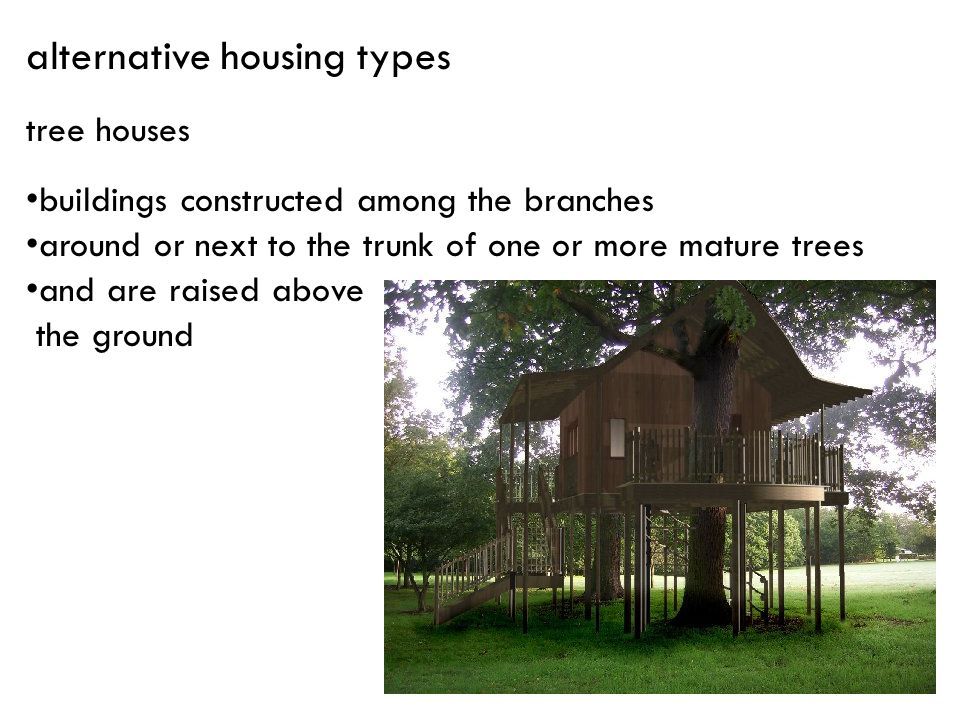 tree houses buildings constructed among the branches around or next to the trunk of one or more mature trees and are raised above the ground